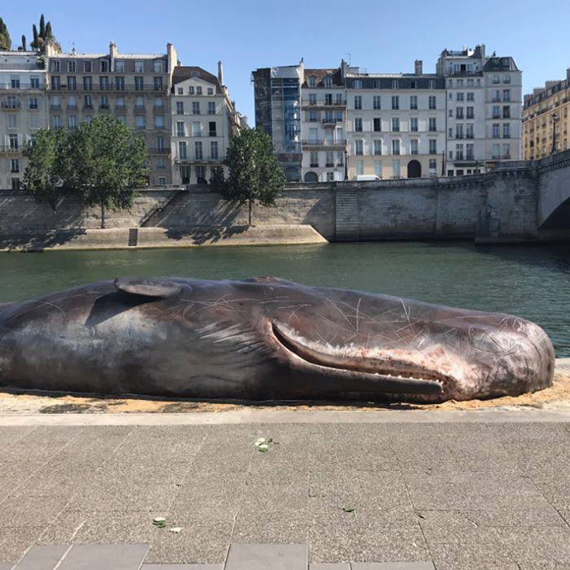 captain boomer collective whale paris installation